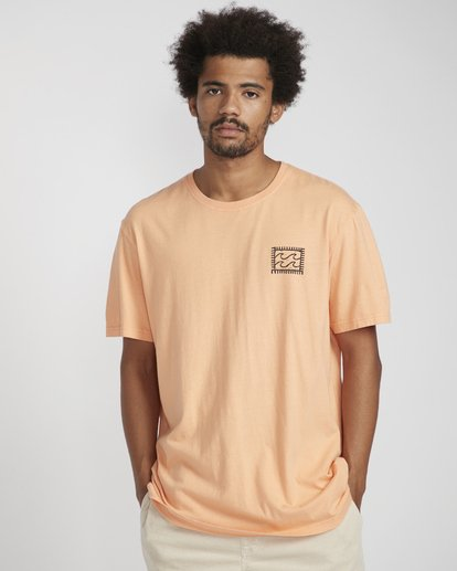 2 Nairobi T-Shirt Orange N1SS28BIP9 Billabong
