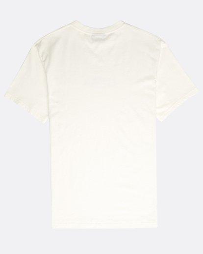 1 Vinta T-Shirt Beige N1SS31BIP9 Billabong