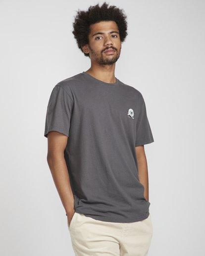 2 Pigment Line T-Shirt Gris N1SS40BIP9 Billabong