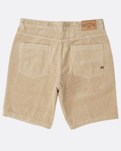 1 Bad Dog Shorts Grün N1WK22BIP9 Billabong