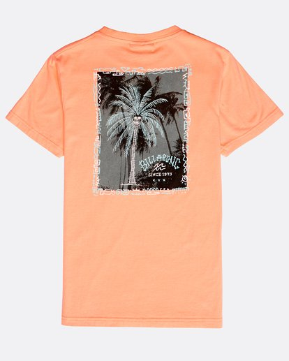 1 Boys' Get Back T-Shirt Naranja N2SS08BIP9 Billabong