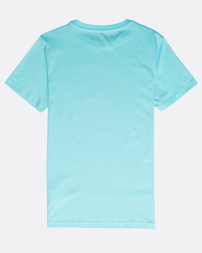 1 Boys' Rogue Set T-Shirt Verde N2SS17BIP9 Billabong