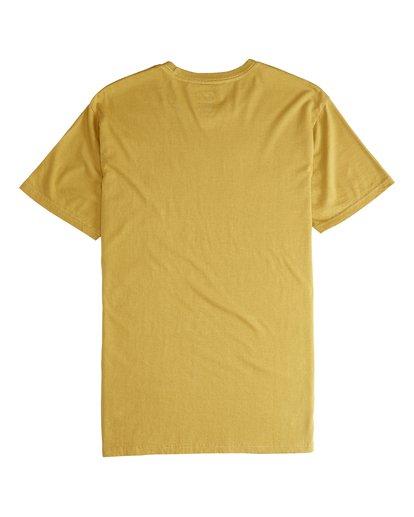 6 Jungle - T-Shirt für Männer Silber Q1SS24BIF9 Billabong