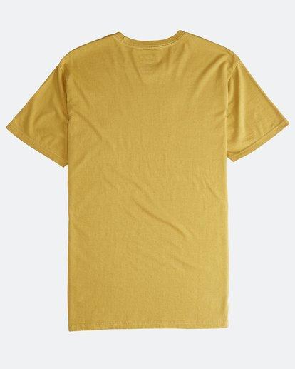 1 Jungle - T-Shirt für Männer Silber Q1SS24BIF9 Billabong