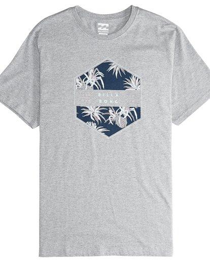 4 Access - T-Shirt für Männer Grau Q1SS38BIF9 Billabong