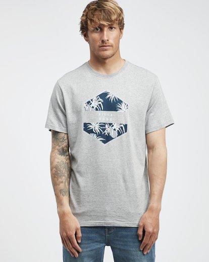 6 Access - T-Shirt für Männer Grau Q1SS38BIF9 Billabong