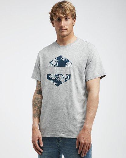 2 Access - T-Shirt für Männer Grau Q1SS38BIF9 Billabong