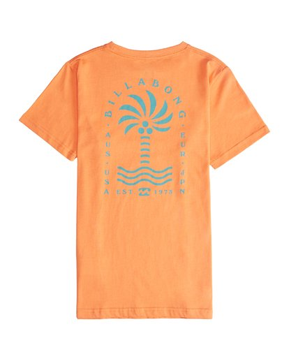 3 Palm Spin - T-Shirt für Jungen Orange Q2SS09BIF9 Billabong