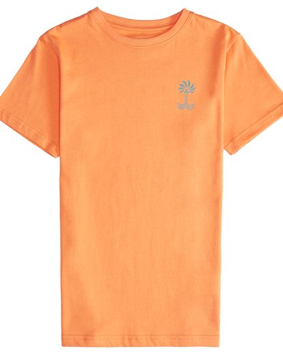 2 Palm Spin - T-Shirt für Jungen Orange Q2SS09BIF9 Billabong