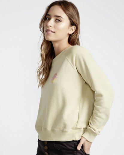 1 Laguna Beach - Pullover für Frauen Grün Q3CR04BIF9 Billabong