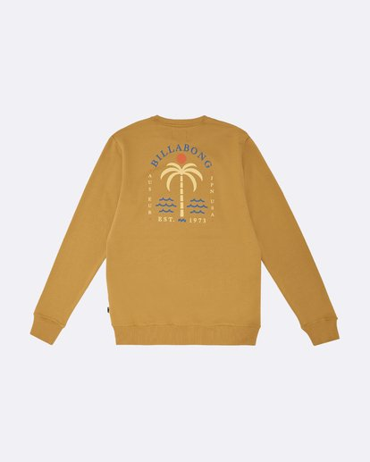 1 Shooner - Sweatshirt für Herren Silber S1CR04BIP0 Billabong
