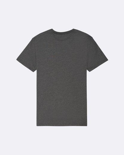 1 State Beach - T-Shirt für Herren  S1SS03BIP0 Billabong
