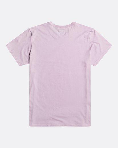 2 Arch - T-Shirt für Herren Violett S1SS38BIP0 Billabong