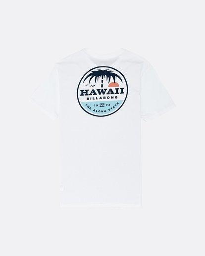 1 Dreamy Place - Camiseta para Hombre Blanco S1SS60BIP0 Billabong
