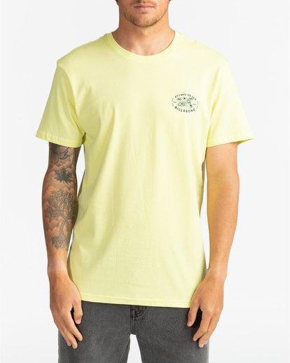 2 Tiger Island - T-Shirt für Herren Mehrfarbig S1SS70BIP0 Billabong