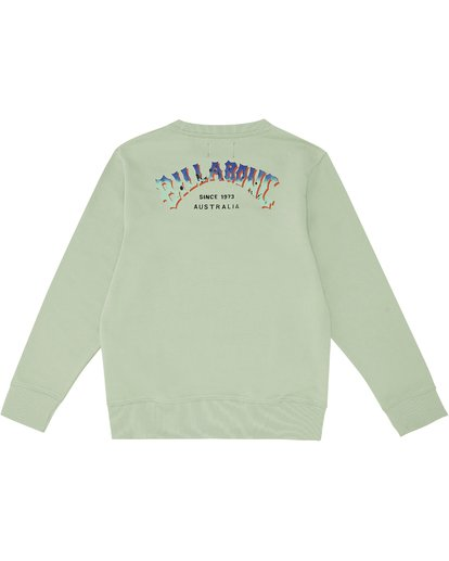 3 Arching - Sweatshirt für Jungen Grün S2CR01BIP0 Billabong