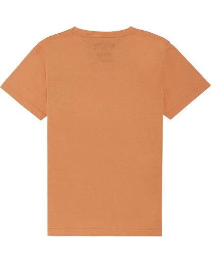 3 The Inside - Camiseta para Niño Naranja S2SS14BIP0 Billabong
