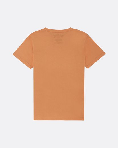 1 The Inside - Camiseta para Niño Naranja S2SS14BIP0 Billabong