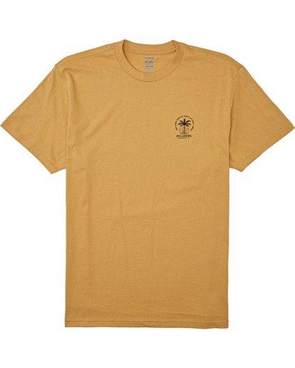 3 Double Tiger - T-Shirt für Männer Silber T1SS14BIS0 Billabong