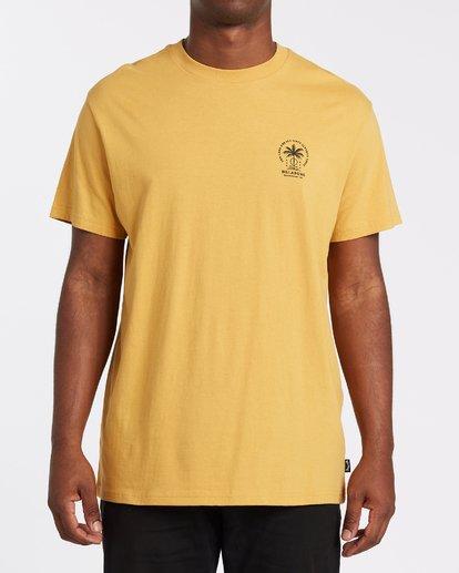 0 Double Tiger - T-Shirt für Männer Silber T1SS14BIS0 Billabong