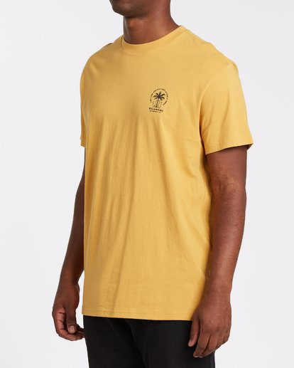 2 Double Tiger - T-Shirt für Männer Silber T1SS14BIS0 Billabong