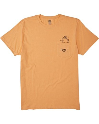 3 Lorax - T-shirt pour Homme Orange T1SS36BIS0 Billabong