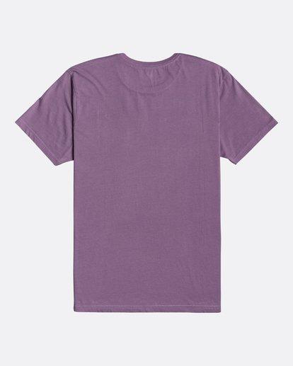 1 Wave Wash Dream Reissue - Camiseta para Hombre Violeta U1SS12BIF0 Billabong