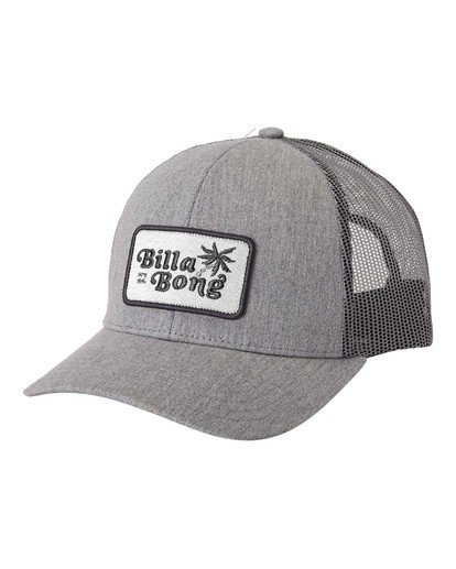 2 Walled - Trucker Cap for Men Grey U5CT08BIF0 Billabong