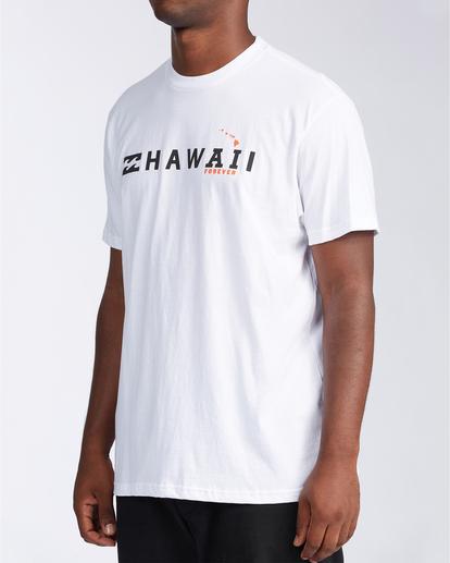 1 AI Forever Hawaii - T-Shirt for Men White V1SS46BIW0 Billabong