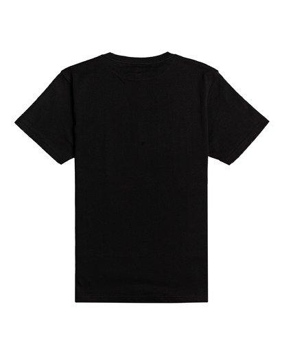 1 Painted Palms - T-Shirt for Boys Black W2SS40BIP1 Billabong