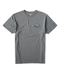 f8b030f2 Mens : T-Shirts | Billabong