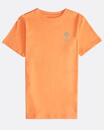Palm Spin - Short Sleeves Tee Boy for Boys  Q2SS09BIF9