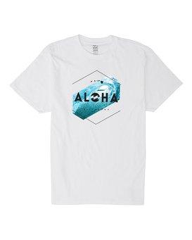 ALOHA HEX HI  M404VBHE