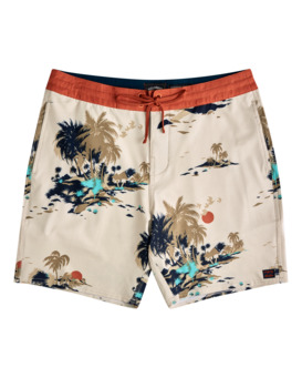 "Adventure Division Surftrek Low Tide 17"" - Board Shorts for Men  W1BS55BIP1"