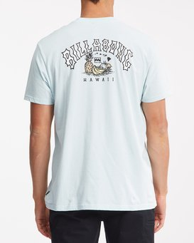 Arch Hawaii - T-Shirt for Men  Z1SS87BIF1