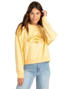 Desert Arch - Cropped Sweatshirt for Women  Z3CR09BIF1