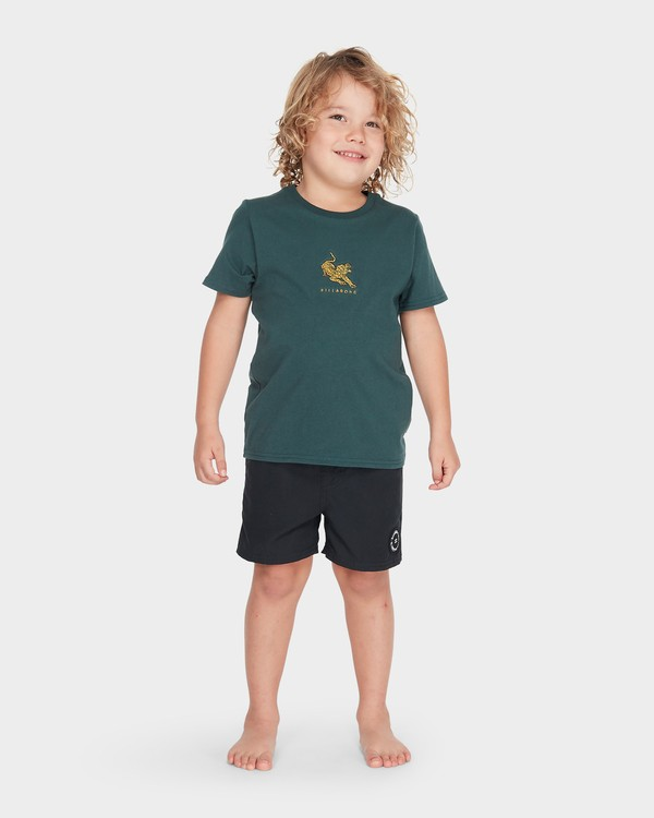0 BOYS TERRACE TEE Green 7595002 Billabong