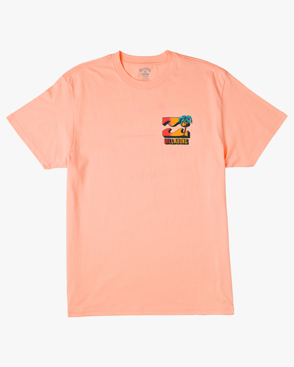 0 Boys' (2-7) BBTV Short Sleeve T-Shirt Black ABTZT00117 Billabong