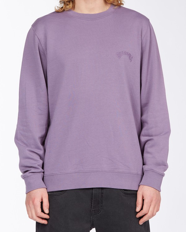 0 Wave Wash Crew Neck Pullover Purple ABYKT00112 Billabong