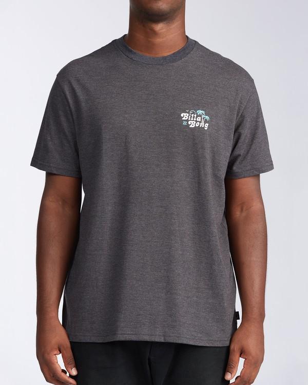 0 Tanzania Short Sleeve T-Shirt Black ABYZT00114 Billabong