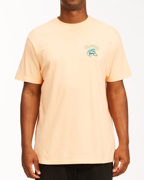 0 Arch Florida Short Sleeve T-Shirt Black ABYZT00360 Billabong