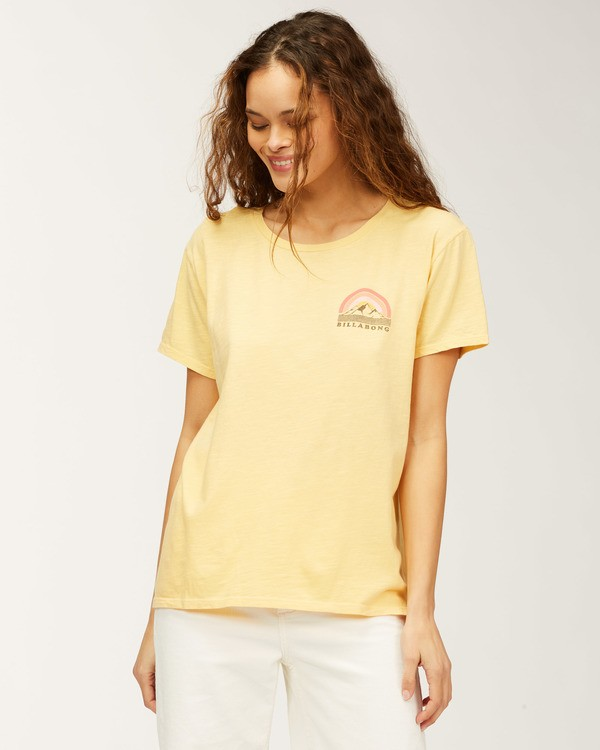 0 Whistler Love Of Root T-Shirt Grey J4673LWH Billabong