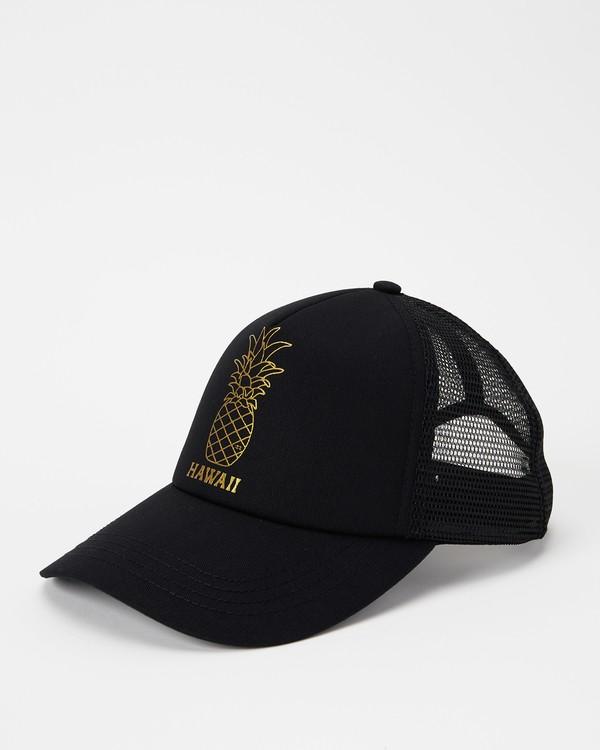 0 Hawaii Pina Trucker Hat Black JAHWNBIR Billabong