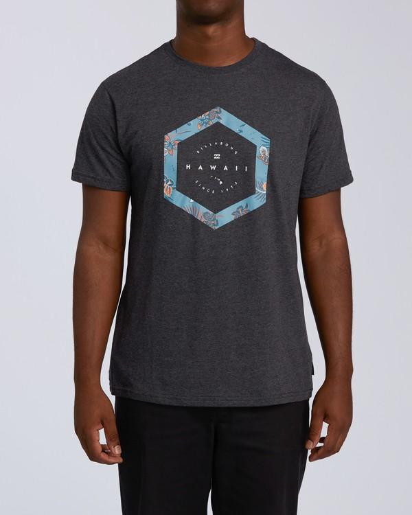 0 Access Hawaii Short Sleeve T-Shirt Black M401VBAC Billabong