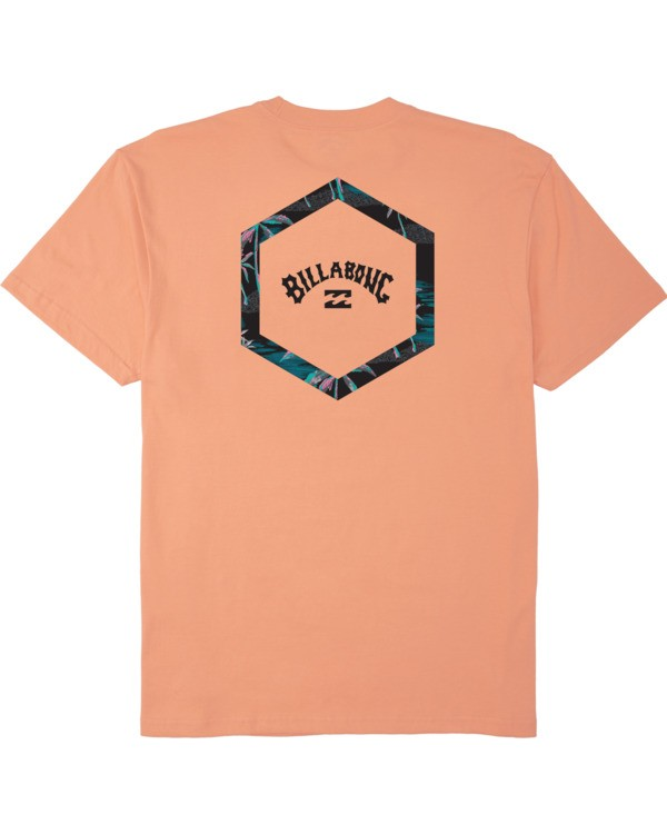 0 Access T-Shirt Black M4043BAC Billabong