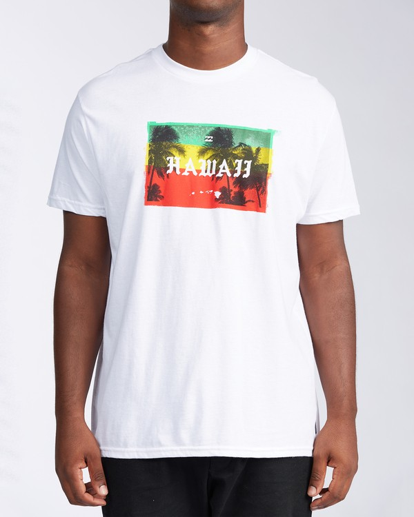 0 State Hawaii T-Shirt White M404LSHI Billabong
