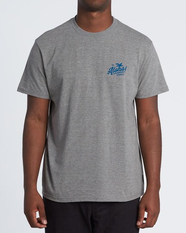 0 Aloha T-Shirt Grey M404VBAL Billabong