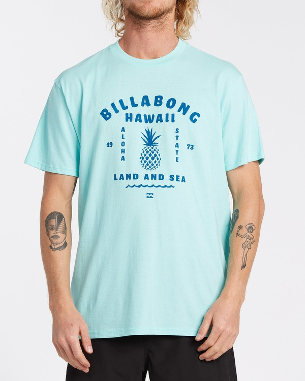 0 Pineapple T-Shirt Grey M404VBPI Billabong