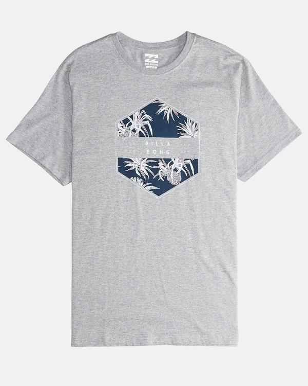 0 Access - T-Shirt für Männer Grau Q1SS38BIF9 Billabong