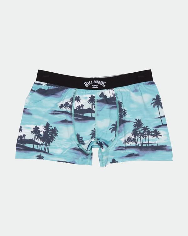 0 Ron Underwear - Unterwäsche für Herren Blau S1UN10BIP0 Billabong